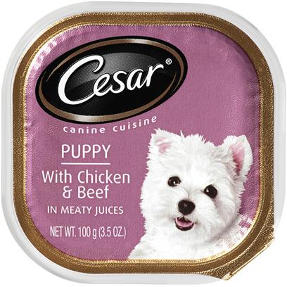 Cesar Canine Cuisine With Chicken & Beef In Meaty Juices