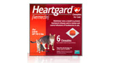 Heartgard for Cats
