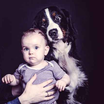 5 Things To Do Before You Introduce Your Dog To Your Baby