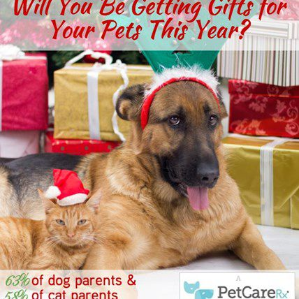 Will Your Pet Get a Gift This Year? 63% of Their Friends Will
