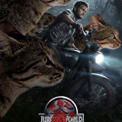 Someone Made Jurassic World with Cats (and It's Amazing!)