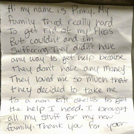 Dog Surrendered to Shelter with Tear-Jerking Note