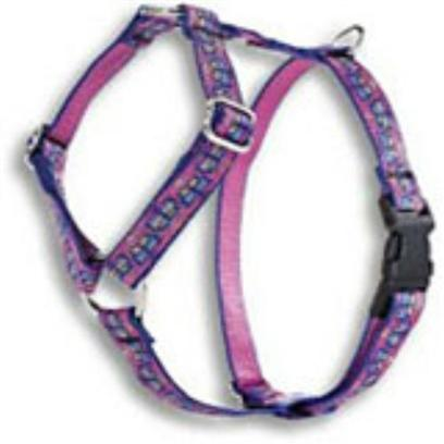 Lupine 1/2-inch R-Harness