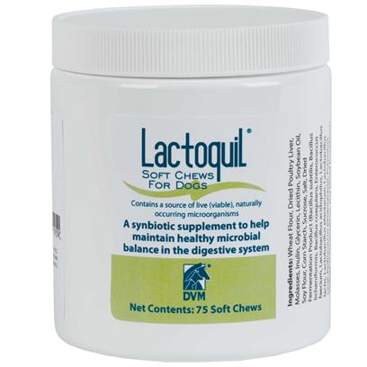 Lactoquil Soft Chews for Dogs