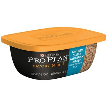 Purina Pro Plan Savory Meals Grilled Salmon Entre Adult Dog Food (10 oz)